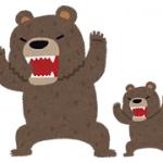 kuma 熊 クマ